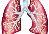 Tutto sul tumore al polmone