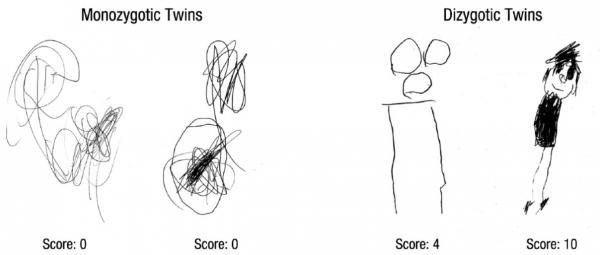 Il Disegno Dei Bambini Piccoli Può Predire Lintelligenza Nel Corso