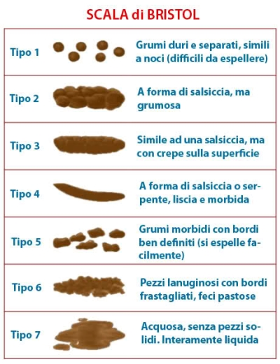 Bristol Stool Scale