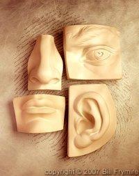 giuseppesantonocito_senses-1
