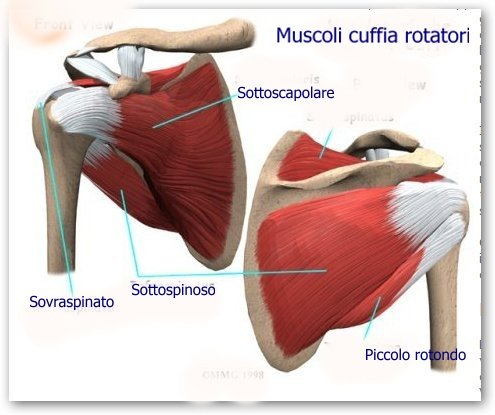 Le 10 cause più frequenti di dolore alla spalla..