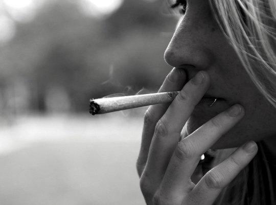 miacucci_marijuana