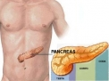 "Tumore del pancreas: cause, sintomi, diagnosi e terapia del ""big killer"""
