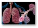 asma-reflusso-gastroesofageo