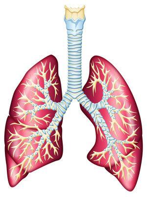 Tumore al polmone
